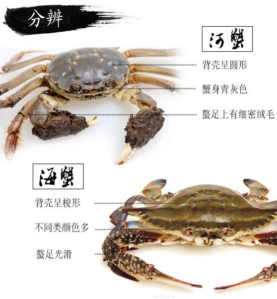 Crab の tastes CQ.jpg of crab time law