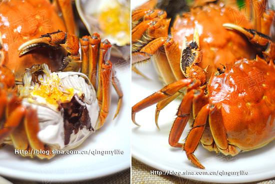 Crab の tastes Lo.jpg of crab time law