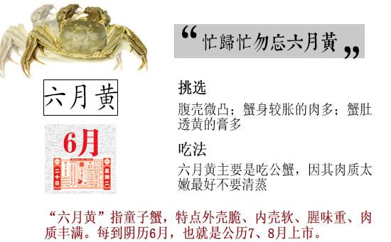 Crab の tastes Cu.jpg of crab time law