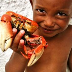 吃螃蟹可不是随便的事儿!