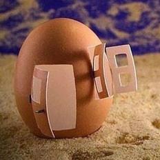 把鸡蛋竖起来的民俗