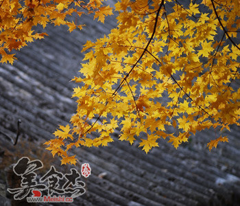 http://www.foodsong.cn/list/4397.html