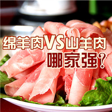 绵羊与山羊:哪种羊肉最好吃?