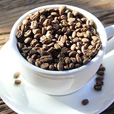 手冲咖啡起源