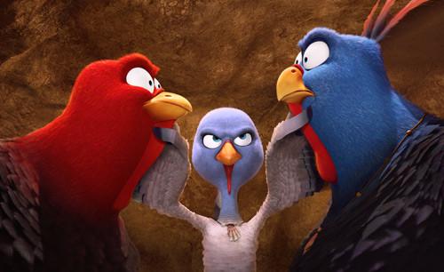 """感恩节,咱们聊聊""""火鸡""""这货Wg.jpg"""