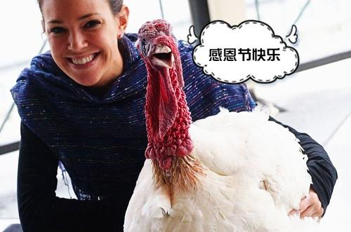 """感恩节,咱们聊聊""""火鸡""""这货Oo.jpg"""