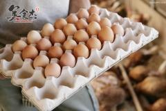 早餐一个鸡蛋六大好处lL.jpg