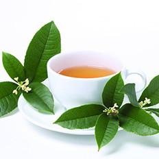 《茶经》中的饮茶文化