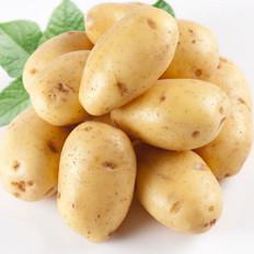 马铃薯有望成我国第四大主粮