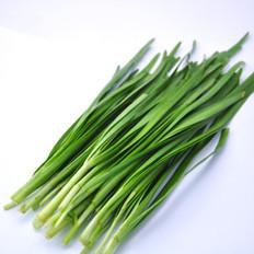 春季吃韭菜的好处与禁忌