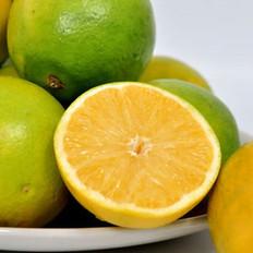 秋冬的第一口橙味 非冰糖橙莫屬!