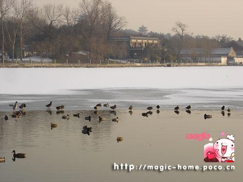 路向北 北京 北海公园图片