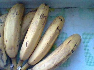 小米香蕉粥kH.jpg
