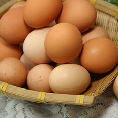 适量吃鸡蛋是不会升高胆固醇的