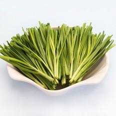 春吃韭菜温肾益脾健胃