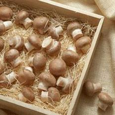 蘑菇冬瓜汤功效大降脂又降糖