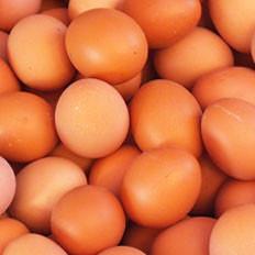 吃鸡蛋人人易犯八个错