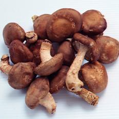 多吃蘑菇有助防肝癌