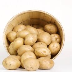 盘点大众关于土豆的6个认识误区!