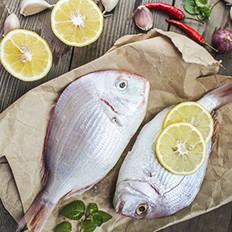 夏天吃这些鱼最好