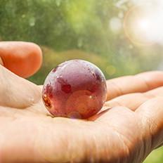 夏天吃葡萄的好处和清洗窍门