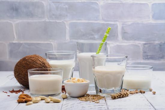 什么是蛋白粉?蛋白粉哪个牌子好?